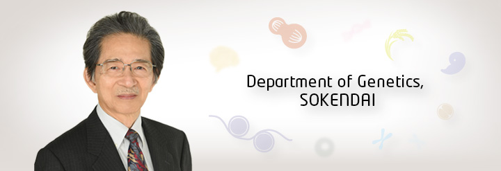 Department of Genetics, SOKENDAI