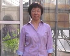 Prof. Kurata