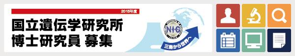 2015年度 国立遺伝学研究所 博士研究員募集