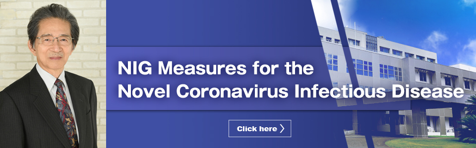 NIG Measures for the Novel Coronavirus Infectious Disease