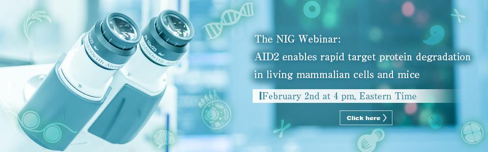 The NIG Webinar