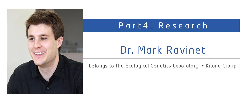Dr. Mark Ravinet Ecological Genetics Laboratory Kitano Group
